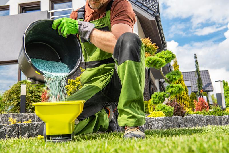 Caucasian Garden Worker Preparing Grass Lawn Fertilizer. Spring Time Fertilizing Job.